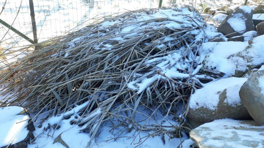 """Solche """"Dreckecken"""" sind wichtig! Als Winterquartier für Nager und Insekten."""