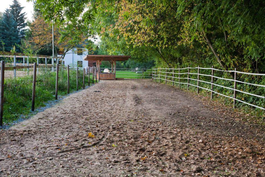"""Der 8m breite Weg vom """"alten Trail"""" zur Heuraufe - links befestigt und rechts Naturboden."""