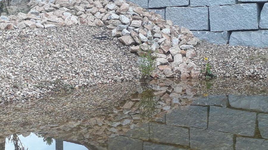 Der Teich - er funktioniert auch im Hochsommer.